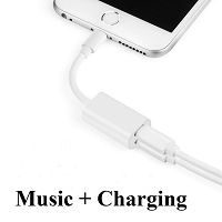 iPhone Lightning to 2 In 1 Adapter