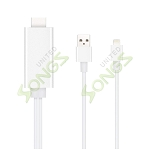 iPhone 5/6 HDTV Cable Silver